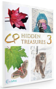 CP Hidden Treasures Volume III